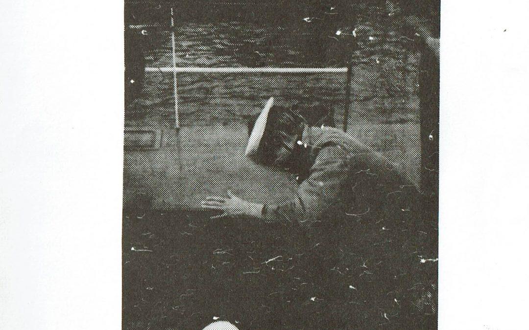 1981 No1 Februari